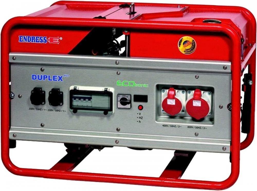 Endress ESE 1506 DSG-GT/A  ES Duplex с блоком автоматики в комплекте