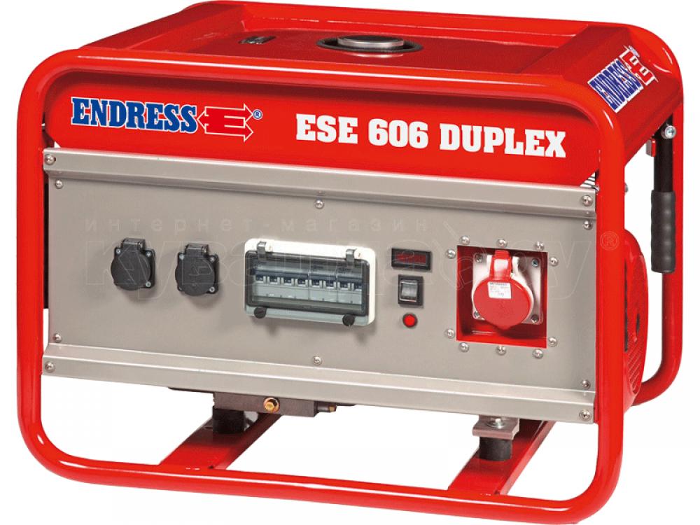 Endress ESE 606 DSG-GT/A ES Duplex с блоком автоматики в комплекте