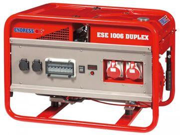 Endress ESE 1306 DSG-GT/A  ES Duplex с блоком автоматики в комплекте